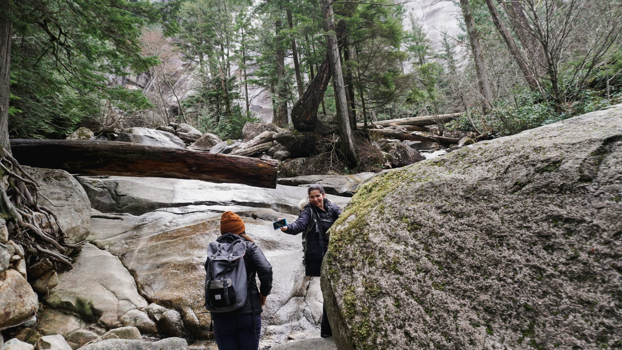 A Walk On The Wild Side: Yervana Local Amber Rittinger