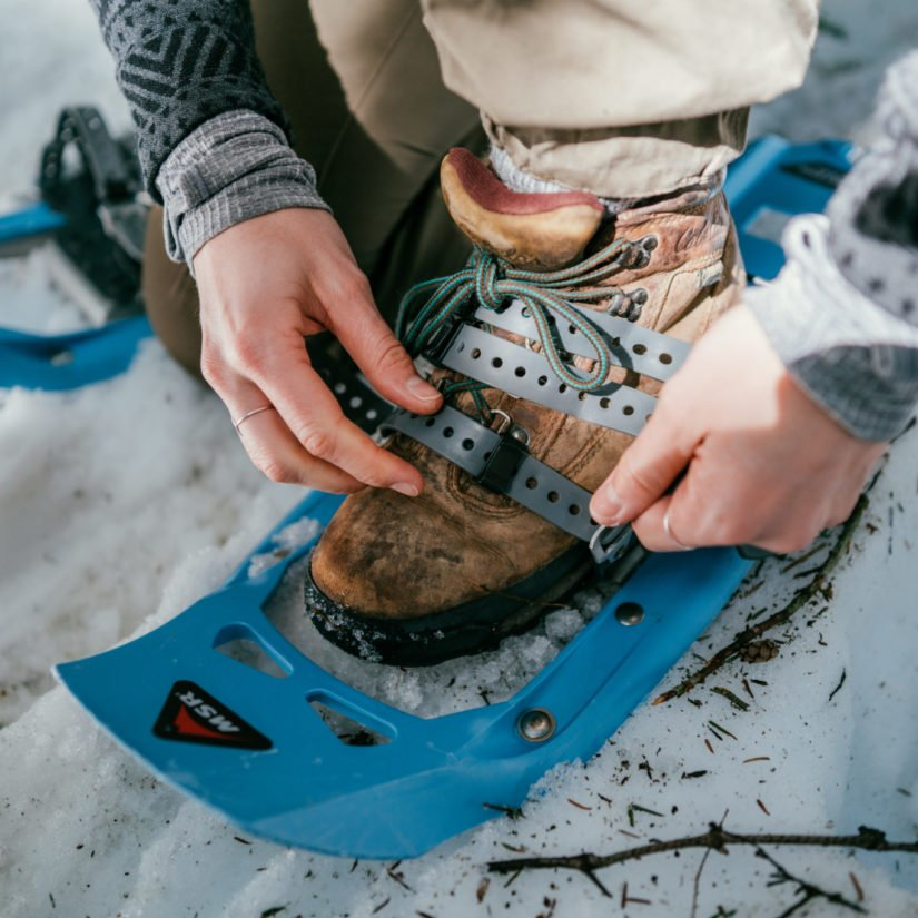 Local Lead: Snowshoe Trails Near Canmore