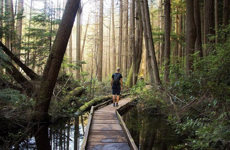 Person walking along wooden bridge: Whyte Lake hike, Vancouver