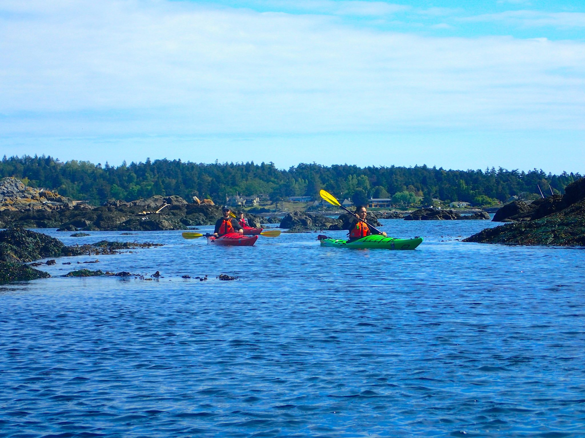 Sea Kayaking On Vancouver Island