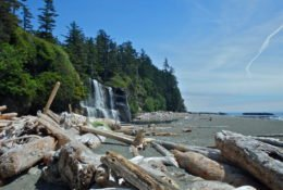A Waterfall On A Beach With Logs In The Foreground. Part Of The West Coast Trail.