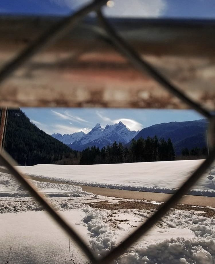 View of Canadian mountains through fence links