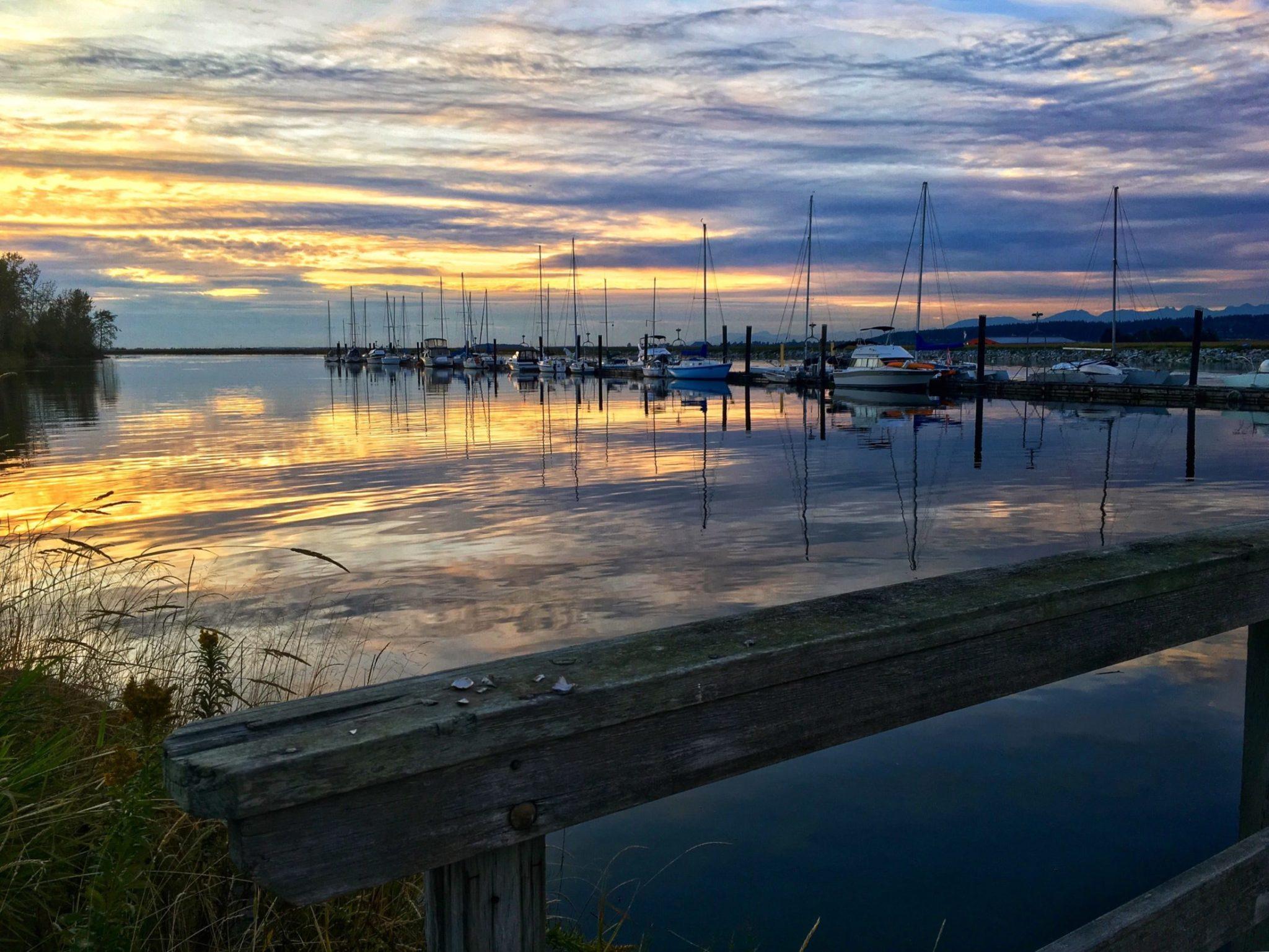 boats at a bc marina during sunset