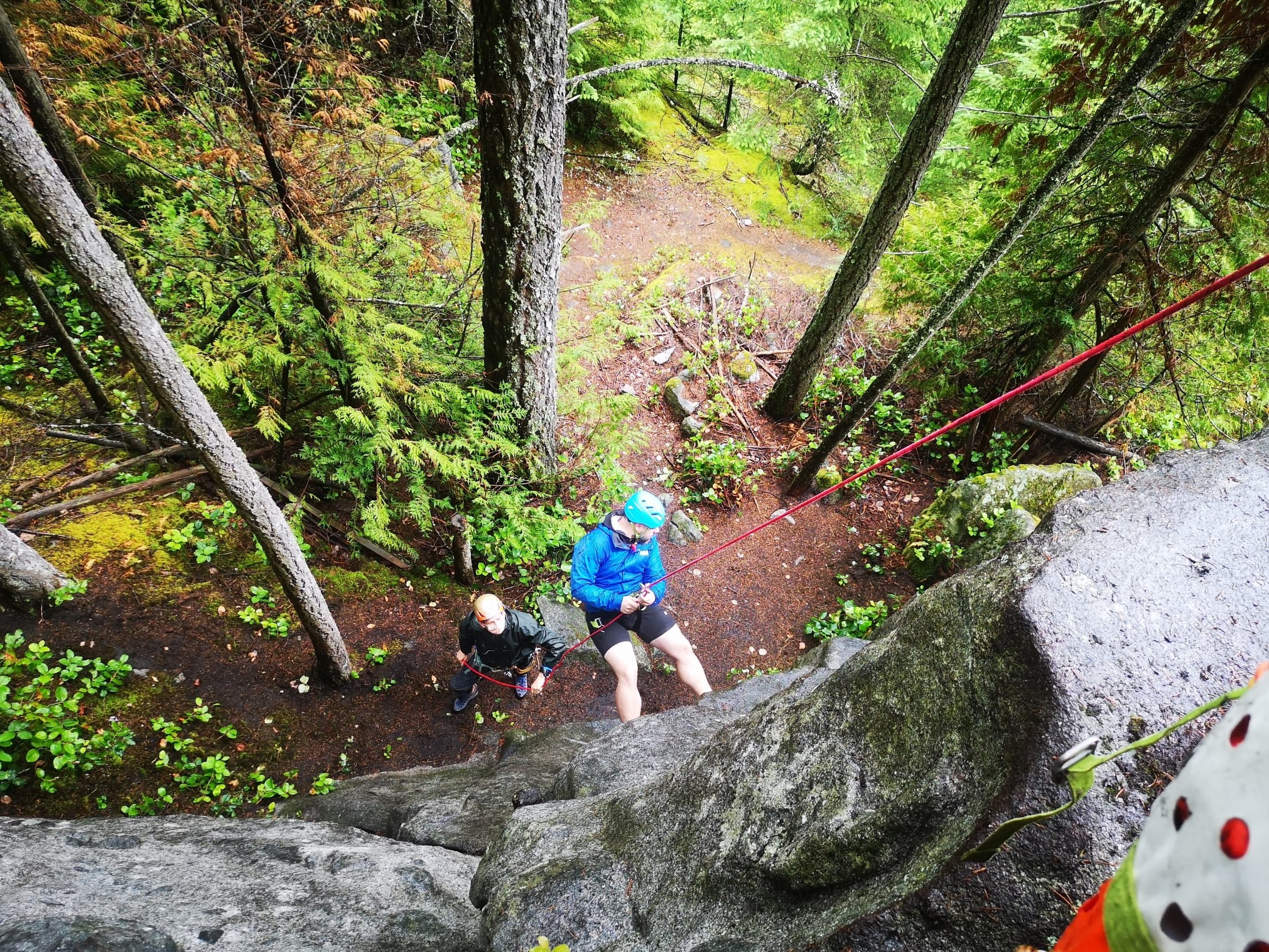 A Person Rappelling On A Dry Rock In A Wooded Area