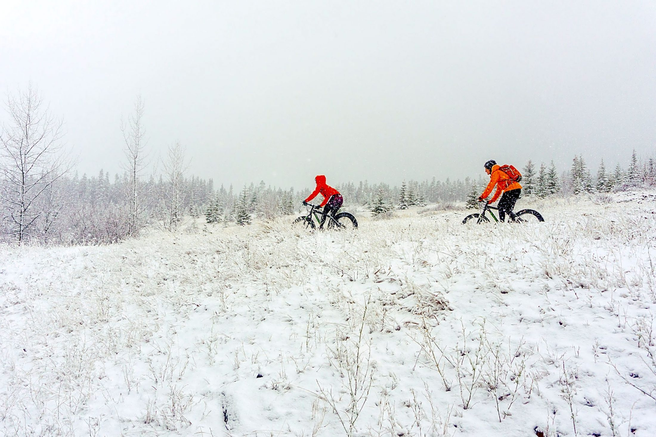 Fat biking in Canmore gift guide